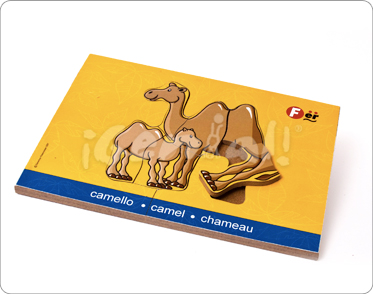 RC  Camello